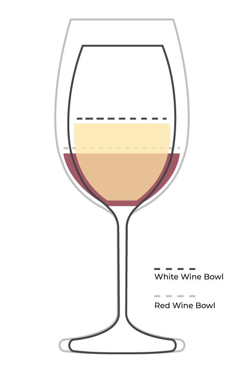 Wine glass diagram
